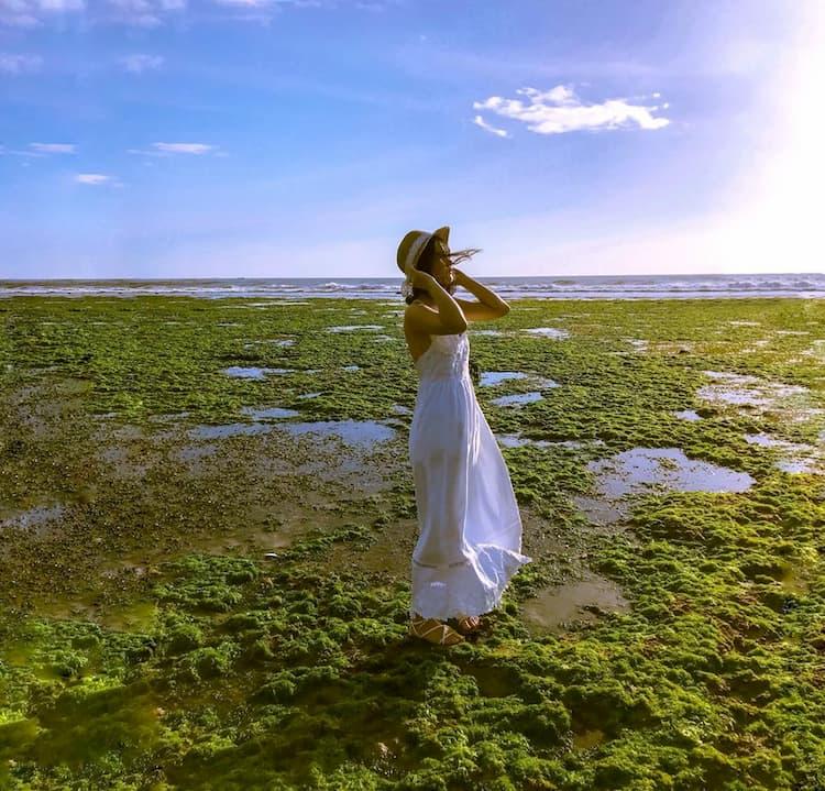 Bãi rong biển tuyệt đẹp tại Ninh Thuận