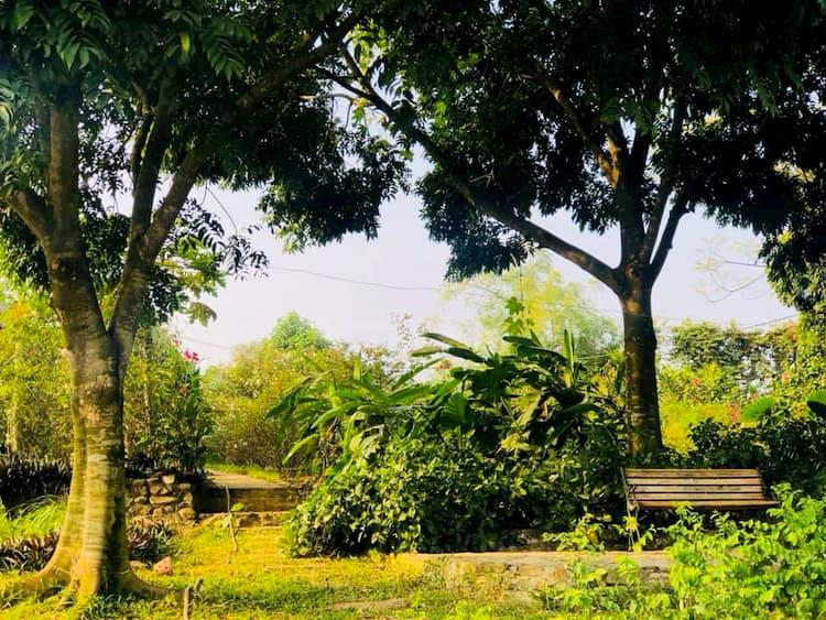 Mua đất xây nhà vườn
