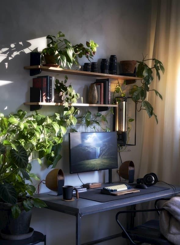 Bố trí cây xanh trong phòng làm việc